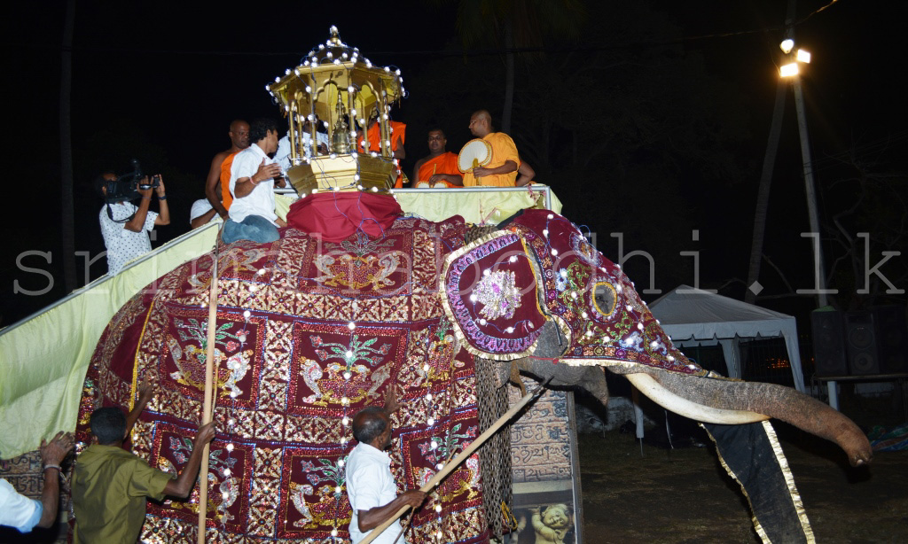 02_Placing_the_casket_in_the_palanquin_on_the_tusker