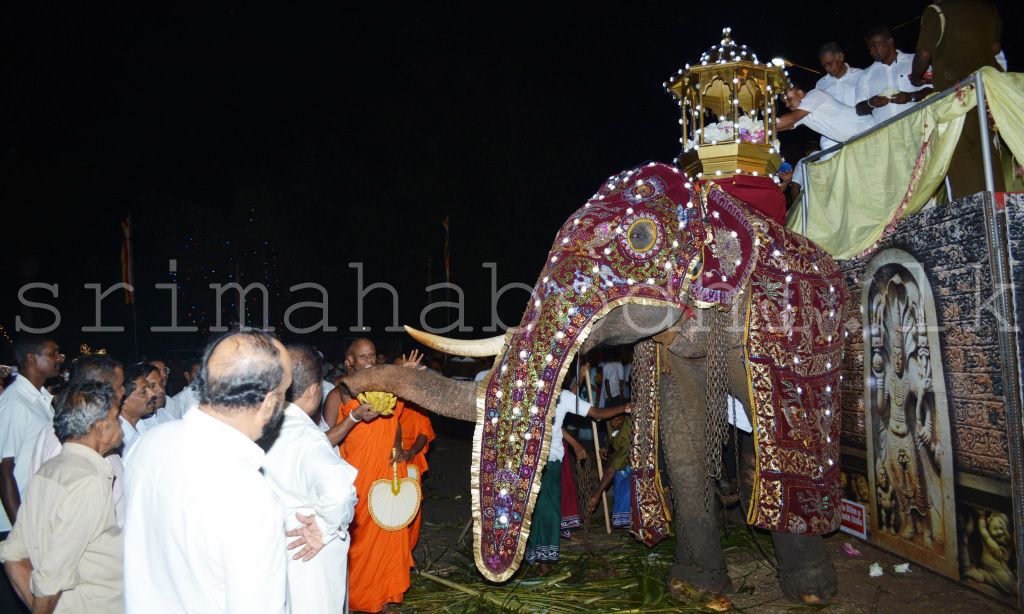 03_Ven._Thero_Treating_the_tusker_with_fruits