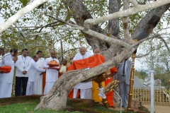 08__PM_Modi_adorning_a_robe_to_the_Jaya_Sri_Maha_Bodhi