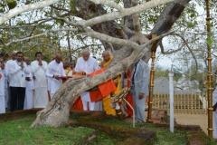 09_PM_Modi_offering_Atapirikara_to_the_Jaya_Sri_Maha_Bodhi