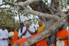 10_PM_Modi_worshipping_the_Jaya_Sri_Maha_Bodhi
